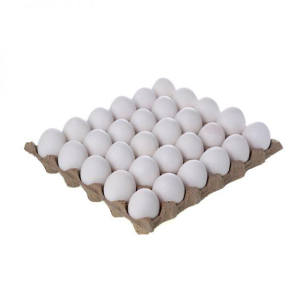 تخم مرغ شانه 30عددی