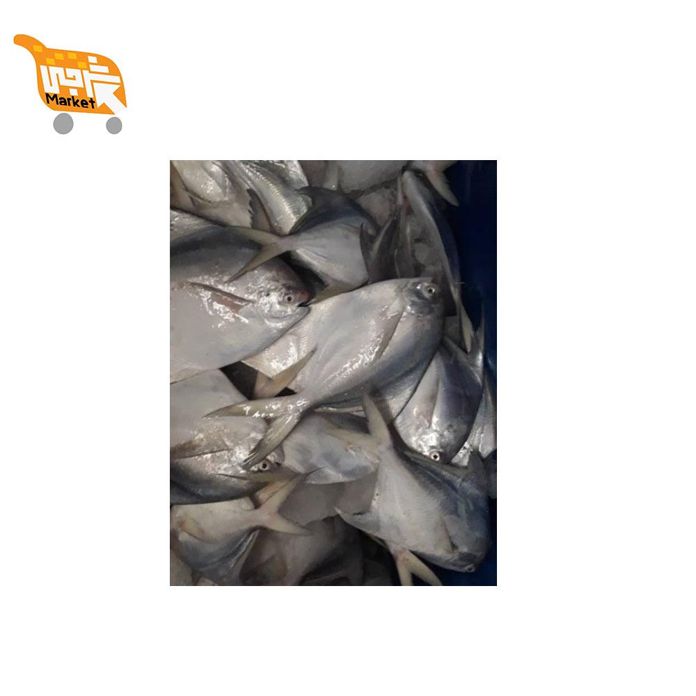 ماهی حلوا سفید کیلویی