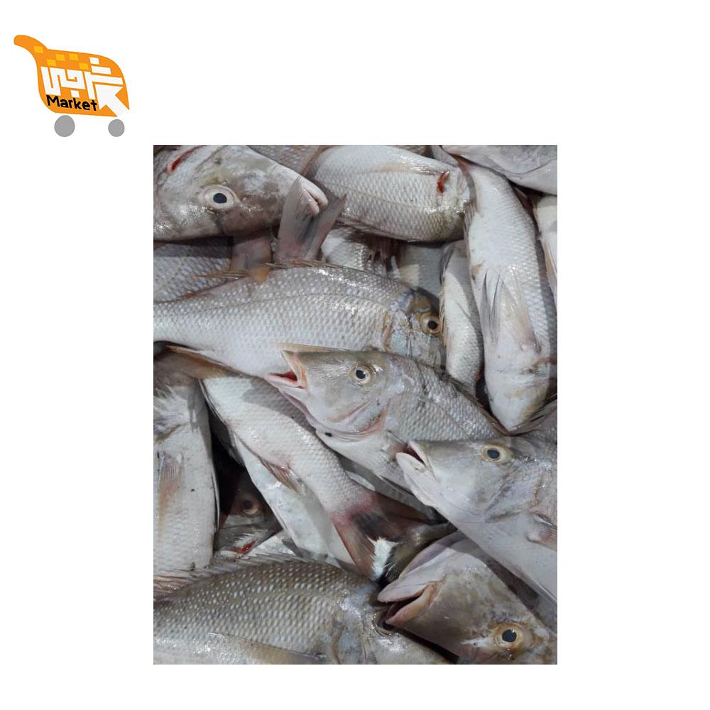ماهی شعری کیلویی