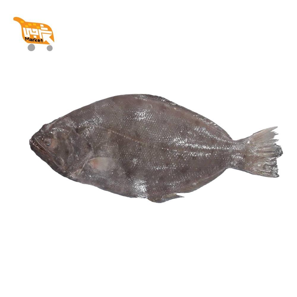 ماهی کفشک کیلویی